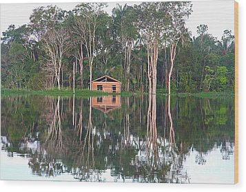 Amazon Reflections With Abandoned House Wood Print by Nareeta Martin