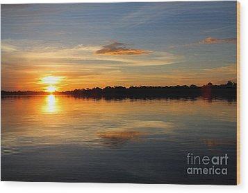 Wood Print featuring the photograph Amazon Sunset by Nareeta Martin