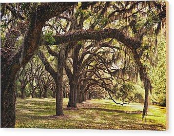 Amber Archway Wood Print
