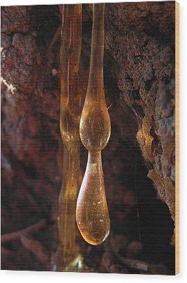 Amber Sap Wood Print by Cheryl Hoyle