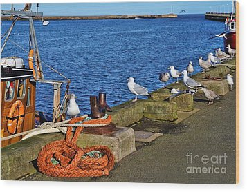 Amble Quayside Wood Print