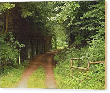 Ambler's Way Wood Print by Marty  Cobcroft