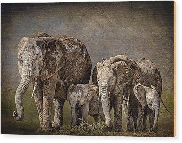 Amboseli Herd Wood Print