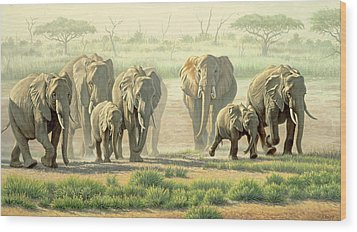 Amboseli Promenade Wood Print by Paul Krapf