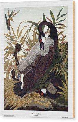 America 2013 Wood Print by Philip Slagter