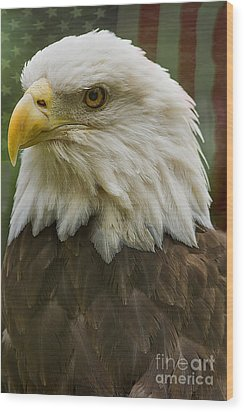 American Bald Eagle With American Flag Background Wood Print by Anne Rodkin