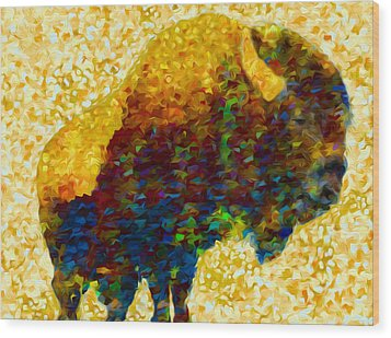American Bison Wood Print by Jack Zulli