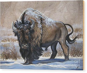American Bison Winter Wood Print by Anne Shoemaker-Magdaleno