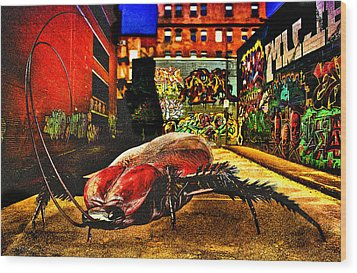 American Cockroach Wood Print by Bob Orsillo