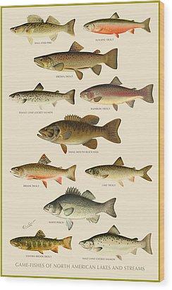 American Game Fish Wood Print by Gary Grayson