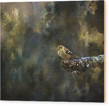 American Goldfinch 4 Wood Print by Deena Stoddard