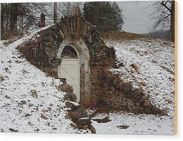 Wood Print featuring the photograph American Hobbit Hole by Michael Porchik