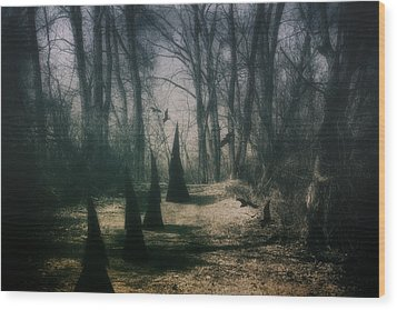 American Horror Story - Coven Wood Print