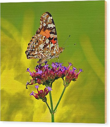 American Painted Lady Butterfly Wood Print by Karen Adams