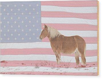 American Palomino Wood Print by James BO  Insogna