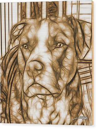 American Pit Bull - Sepia Sketch  Wood Print by Michael Spano