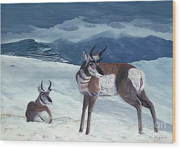 American Pronghorn Wood Print by Tom Blodgett Jr