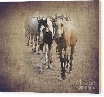 American Quarter Horse Herd Wood Print by Betty LaRue
