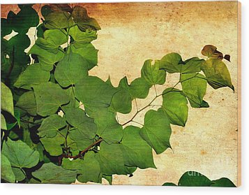 Wood Print featuring the photograph American Redbud by Denise Tomasura