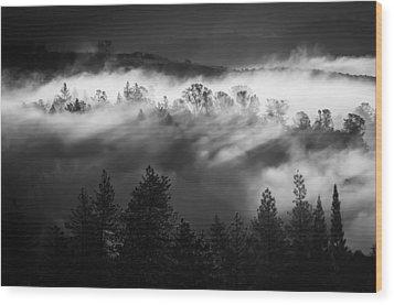American River Canyon Wood Print