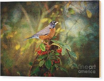 American Robin - Harbinger Of Spring Wood Print by Lianne Schneider
