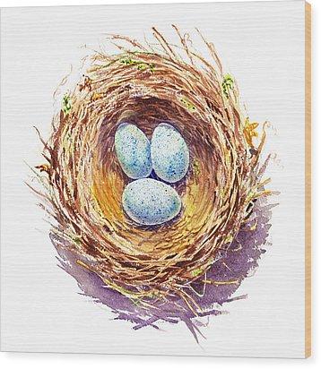 American Robin Nest Wood Print by Irina Sztukowski