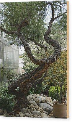 American Zen Wood Print by Renee Anderson