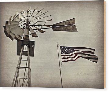 Americana Wood Print by Chris Berry