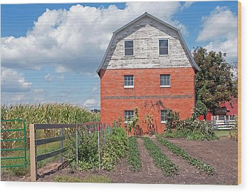 Amish Barn And Garden Wood Print by David Arment