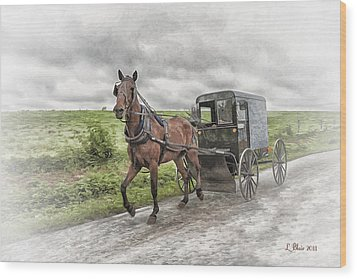 Amish Country Wood Print