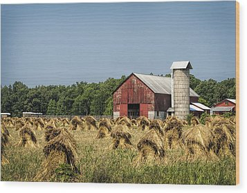 Amish Country Wheat Stacks And Barn Wood Print by Kathy Clark
