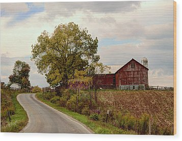 Amish Farm II Wood Print
