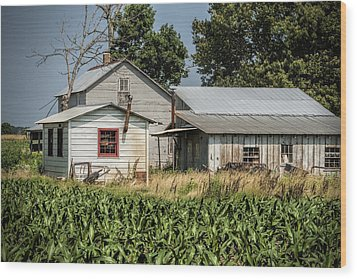 Amish Farm In Tennessee Wood Print by Kathy Clark