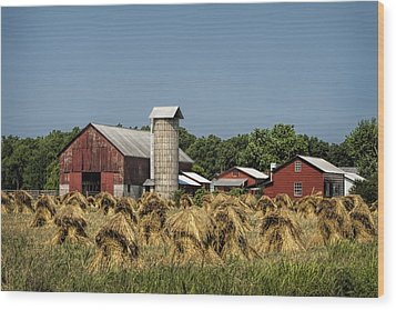 Amish Farm Wheat Stack Harvest Wood Print by Kathy Clark