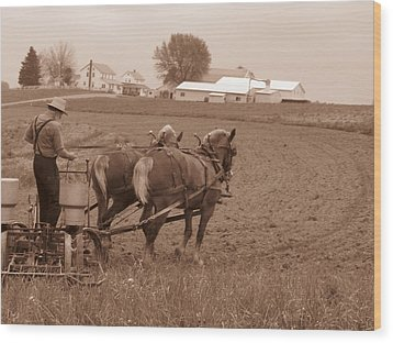 Amish Farmer Wood Print by Janet Pugh