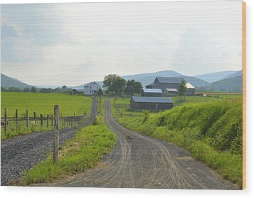 Amish Farmstead #1 - Siglerville Pa Wood Print