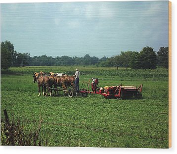 Amish Field Work Wood Print by Joyce  Wasser