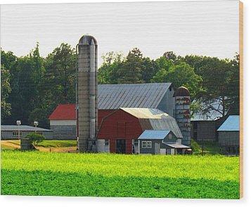 Amish Life Wood Print by Trish Clark