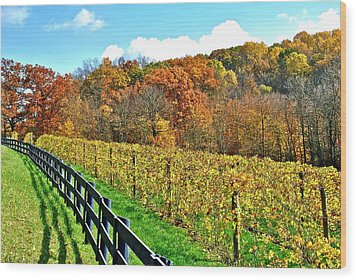 Amish Vinyard Two Wood Print by Frozen in Time Fine Art Photography