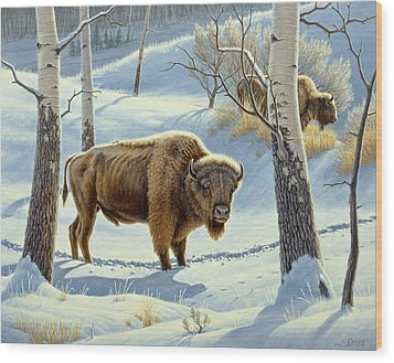 Among The Aspens- Buffalo Wood Print by Paul Krapf
