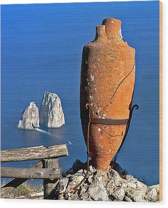 Amphora On The Island Of Capri 2 Wood Print