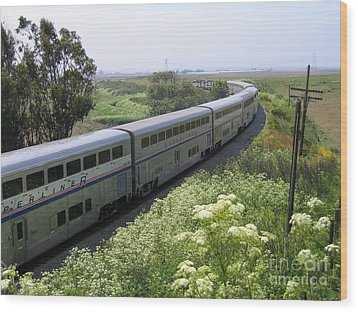 Coast Starlight At Dolan Road Wood Print