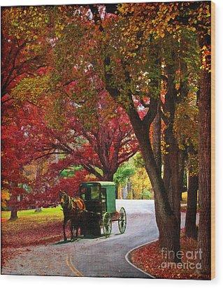 An Amish Autumn Ride Wood Print by Lianne Schneider