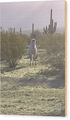 Wood Print featuring the photograph An Arizona Morning by Ruth Jolly