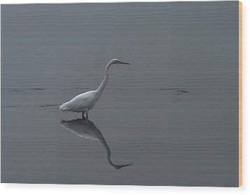 An Egret Standing In Its Reflection Wood Print by Jeff Swan