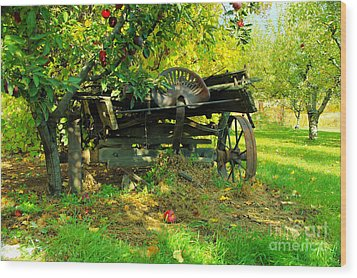 An Old Harvest Wagon Wood Print by Jeff Swan