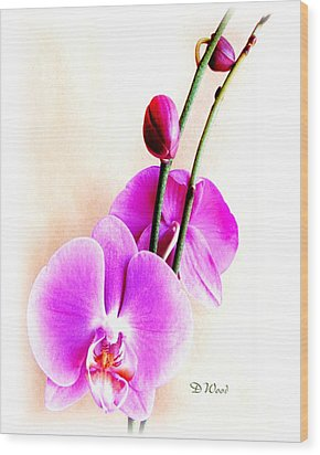 An Orchid For You Wood Print by Doris Wood