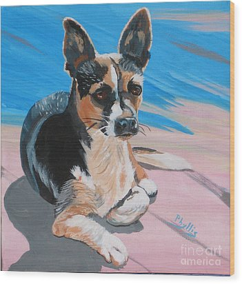 Ancho A Portrait Of A Cute Little Dog Wood Print by Phyllis Kaltenbach