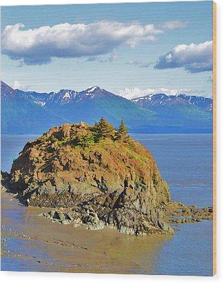 Anchorage Alaska Wood Print