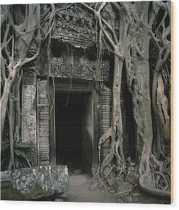 Ancient Angkor Wood Print by Shaun Higson